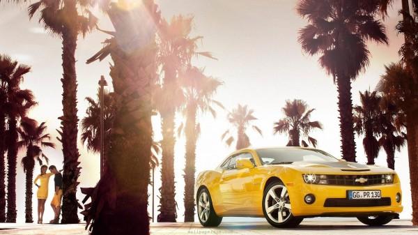 camaro-yellow-photography-2012-eu-palm-trees