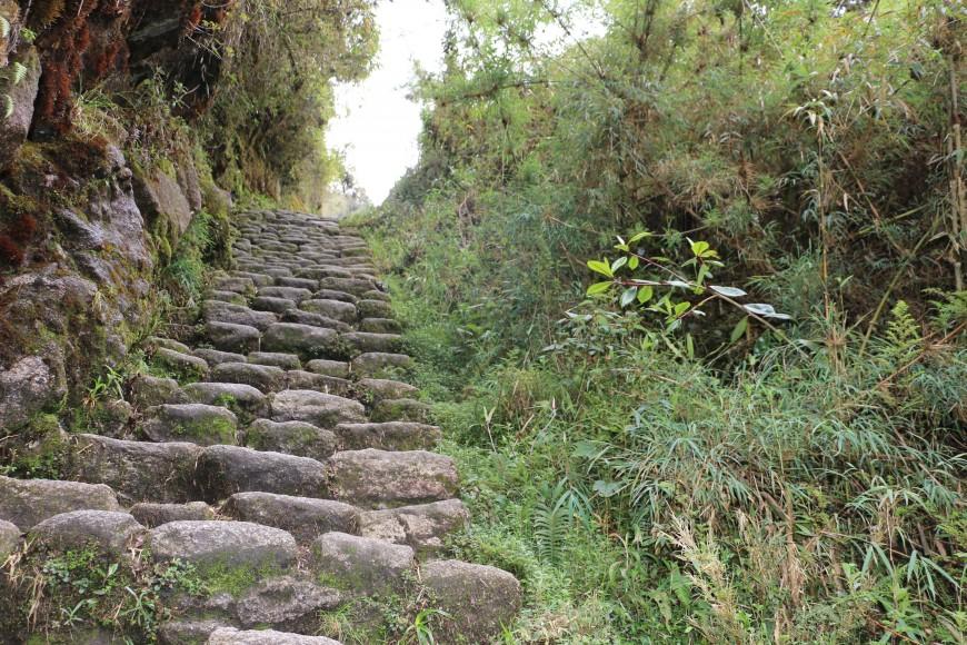 inca made steps