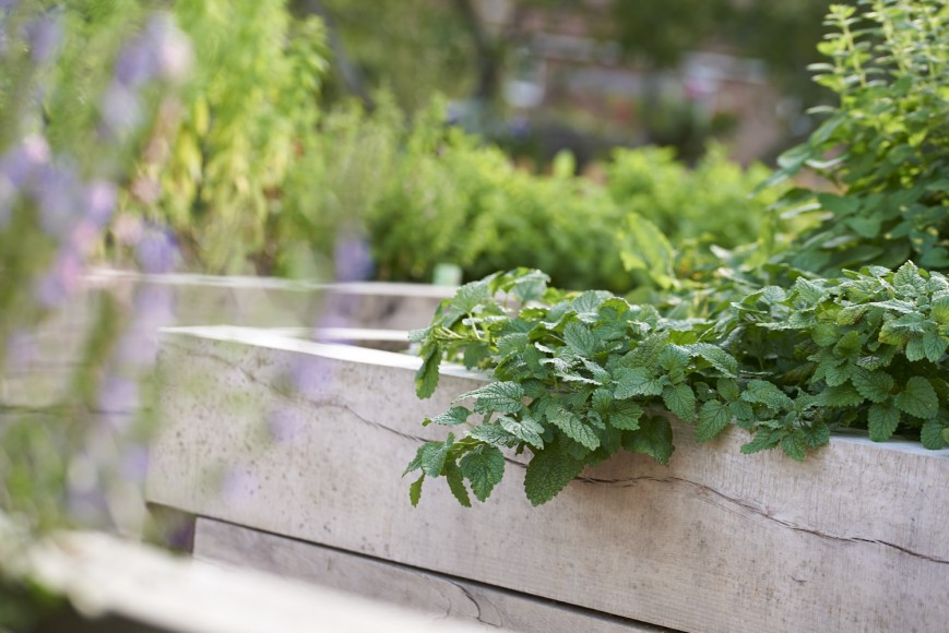 Half-Moon-Kirdfore_Herb-garden